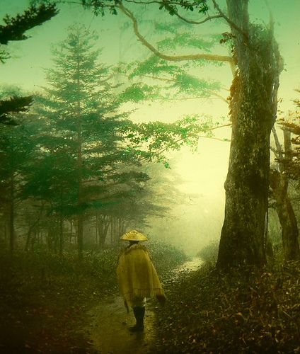 PILGRIM ON A FOREST ROAD -- Into the Mist of Old Japan (#2) by Okinawa Soba, via…