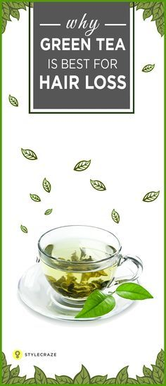 """Have you been wondering """"what's all this fuss about green tea for hair loss?"""" Now you can stop wondering and start drinking green tea because green tea has the potential to fight with the problem of hair loss. Yes, this may sound a bit farfetched, but it is true. Read on to know more! #HairLoss"""