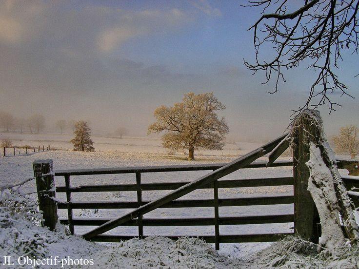 Normandie - levé de soleil sur la neige, Manche, basse-Normandie, France