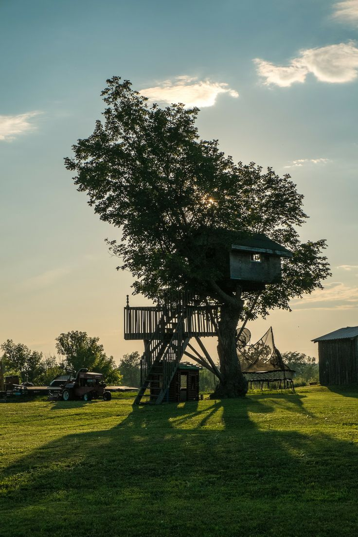 221 best architecture tree house images on pinterest