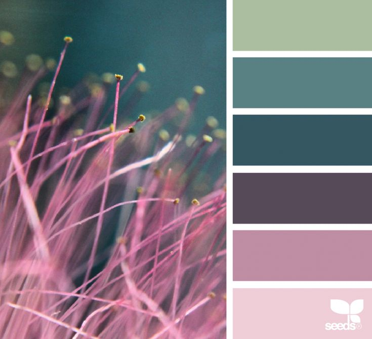 Colour harmony/colour boards - Designing with colour - Design Seeds - Nature Made