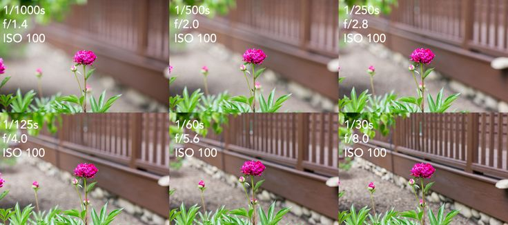 The Exposure Triangle: Understanding How Aperture, Shutter Speed, and ISO Work Together | Fstoppers