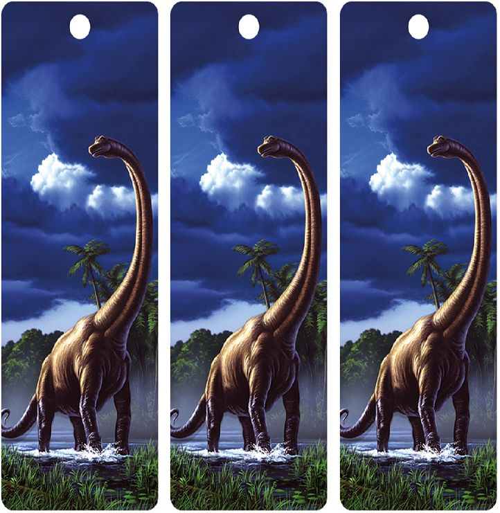 1000  images about dinosaurs printables on pinterest