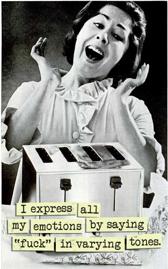 Sarcastic 1950's Housewife Memes ~ Sarcasm~ I express my emotions by saying fuck in varying tones