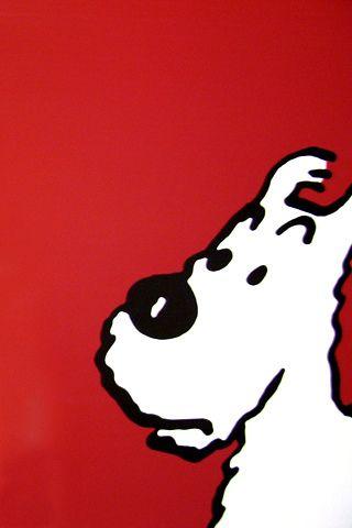 Milou, Hergé: Tintin