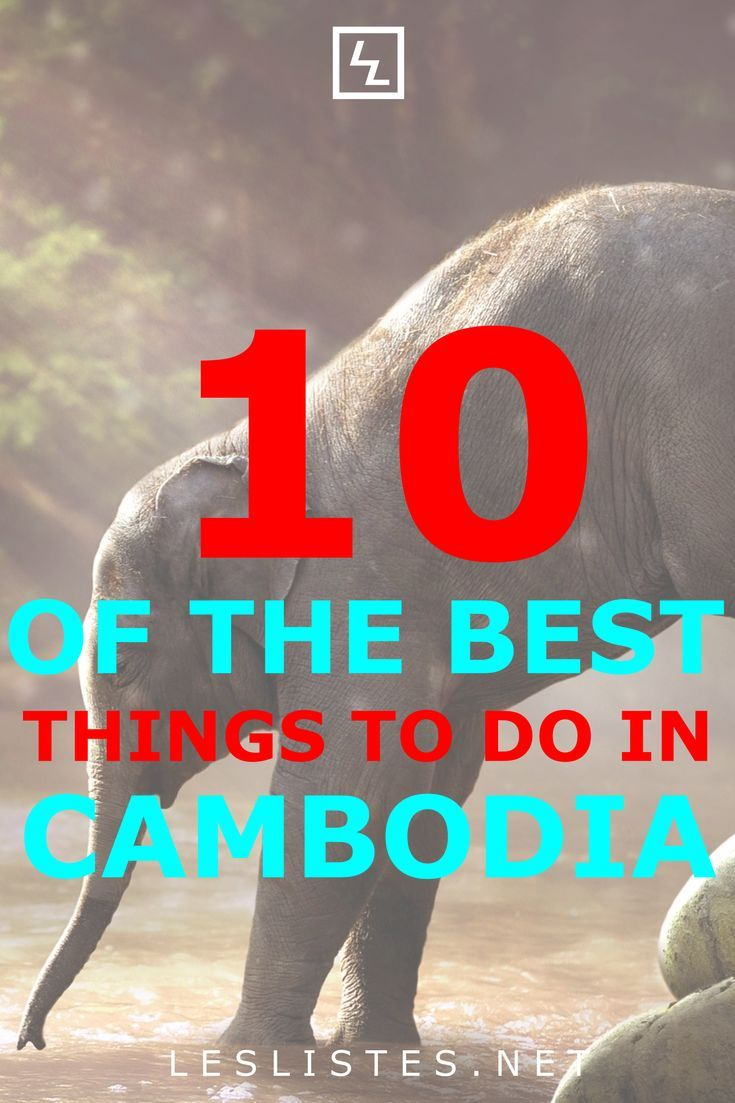 Visiting South East Asian Countries Is Quite The Great Experience Check Out The Top 10 Things To Do In Cambo Things To Do Travel Destinations Asia Stuff To Do