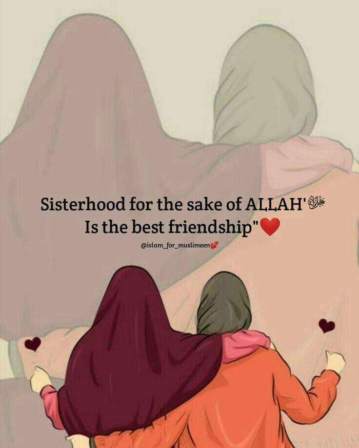 Islamic Friendship Quotes : islamic, friendship, quotes, Tahir, Quotes, Sister, Quotes,, Modesty, Islamic