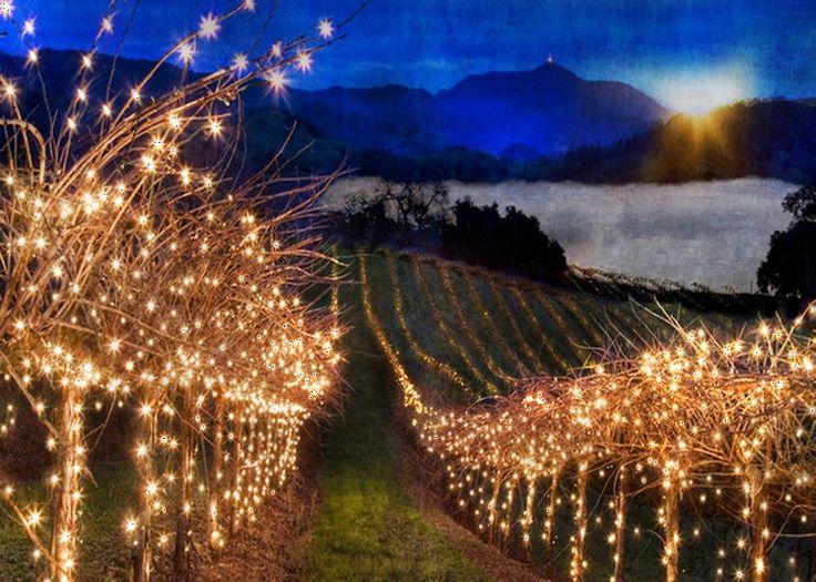 Temecula, California, wine country