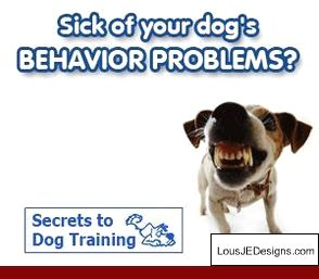 Train Dog To Stop Barking When You Leave And Pics Of Dog Training