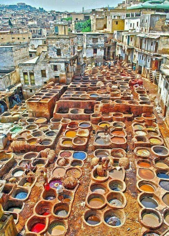 Pin by Amanda Lechner on COLOR in 2019   Fez morocco