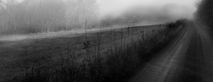 Det är något magiskt med dimma. Jag har alltid blivit trollbunden av den. Här på en grusväg i Steninge.