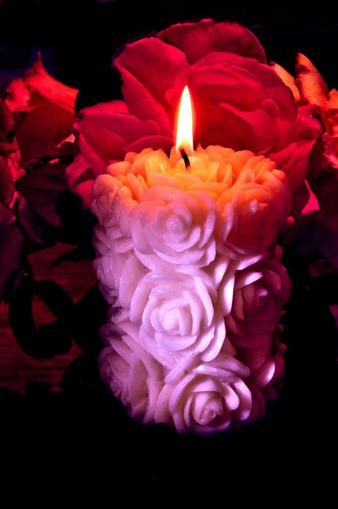 Svíčka * růže
