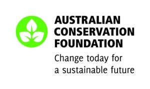 Buy a Yellowbrick – Donate $20 to Australian Conservation Foundation