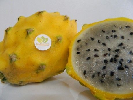 Health benefits push demand for yellow dragon fruit http://www.freshplaza.com/article/150329/Health-benefits-push-demand-for-yellow-dragon-fruit #dragonfruit #pitahaya #freshproduce #exotic #exoticproduce