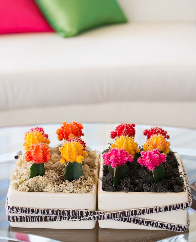 bright neon cactus centrepieces