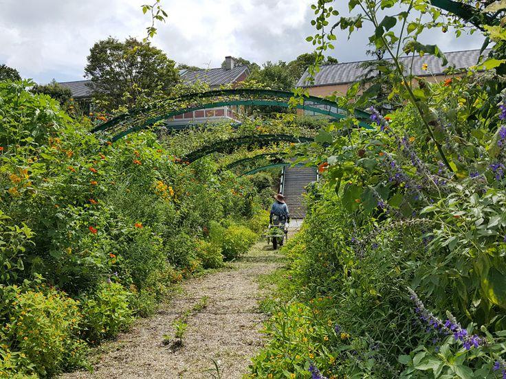 「モネの庭」マルモッタン 花の庭 Claude Monet's garden in Koch Japan. He loves beautiful garden. This is Flower garden.