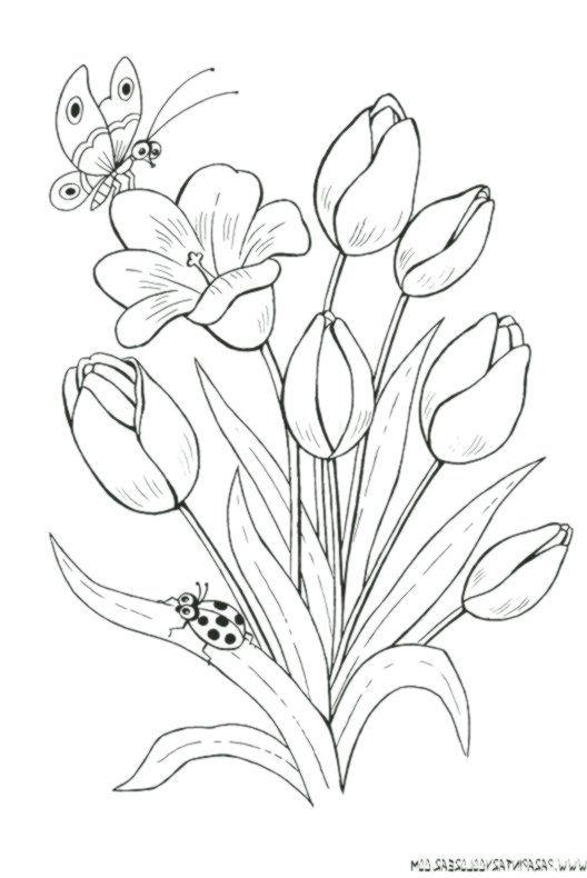zeichnungen-zum-malen-von-blumen-tulpen-019 - #