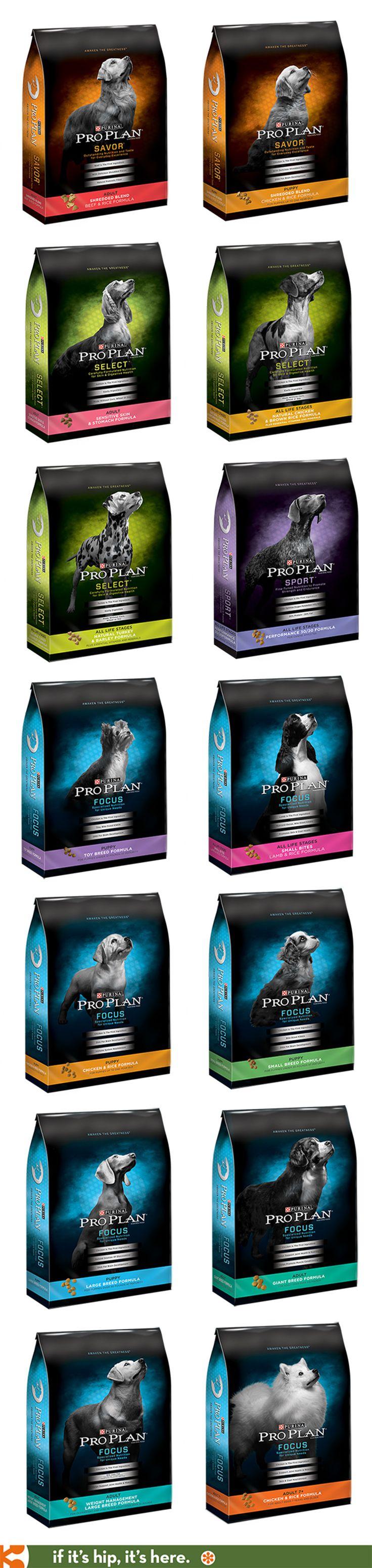 209d36ceb49114de341c57f8204f4066--pet-dogs-rescue-dogs