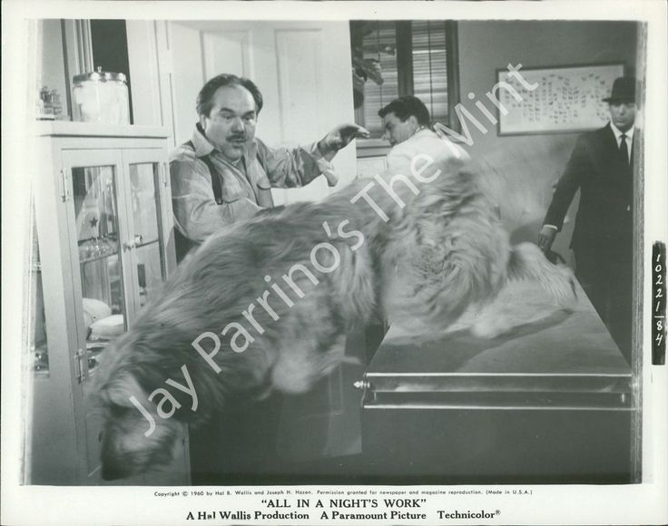 1190839 Photo CLIFF ROBERTSON, DEAN MARTIN All in a Night s Work 1960