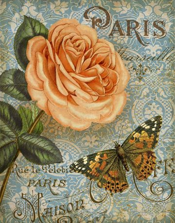 Memories of Paris I by Abby White ~ floral art