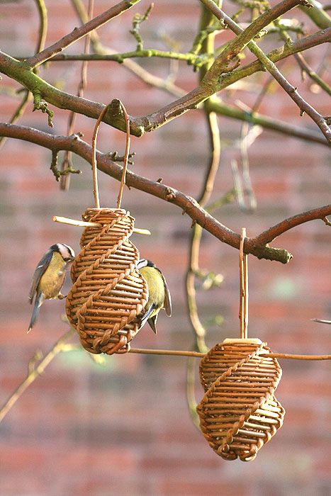 Sunflower seed bird feeder project - As featured in book: Willow Craft 10 Bird Feeder Projects