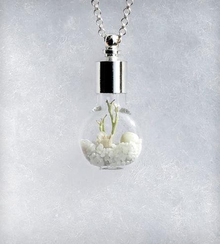 1000 Ideas About Terrarium Necklace On Pinterest Flower