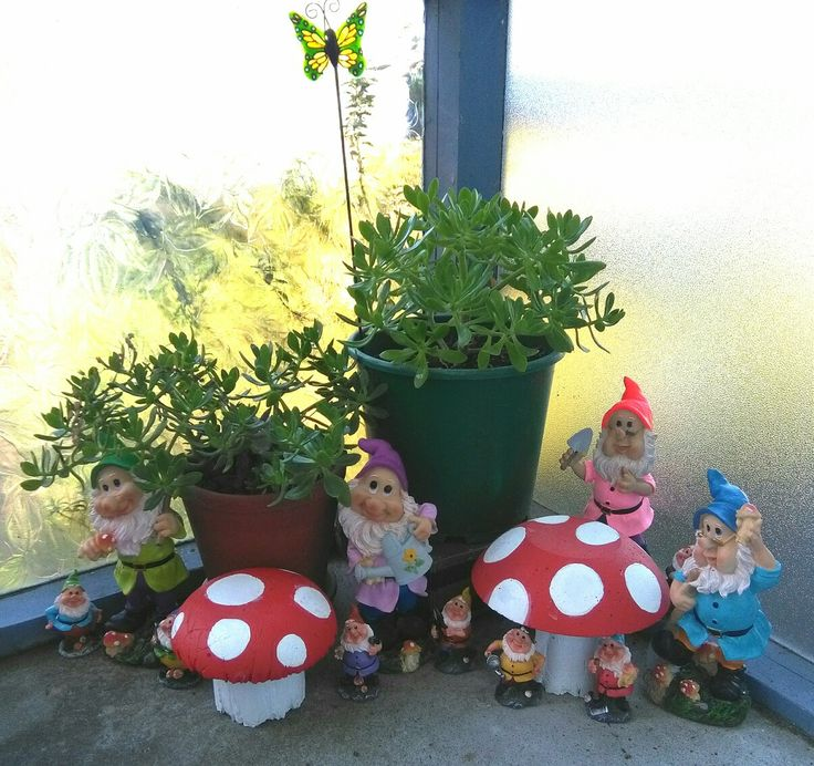 My gnome garden, with hand made concrete mushrooms, succulents on front porch.
