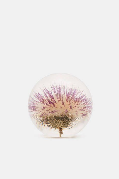 Hafod Grange — Large Paperweight   Open Thistle — THE LINE