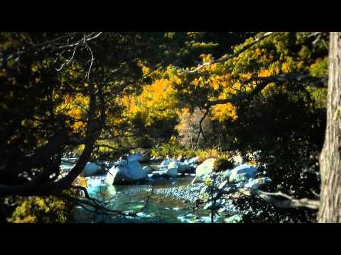 ¿Que tan lindo es ese famoso Río Achibueno?  NO a las CENTRALES en el ACHIBUENO!!