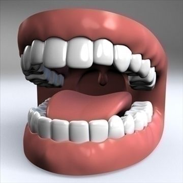 Mouth.zip 3D Model-   Mouth.zip is a fully modeled Human mouth complete with teeth gums tongue and partial throat. This model was created in Cinema 4D using symmetry and hypernurbs. This model comes with 2 materials as seen in the thumbnail image. Materials come with .c4d and .fbx formats only.-Available formats are:.3ds.c4d.fbx.dxf.obj.xPolygon count: 25,492Vertice count: 25,512Materials:2 - #3D_model #Human Types,#Other Anatomy,#Sensory System