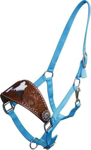 Teal Nylon Leather Bronc Halter Barrel Racer on Noseband Horse Tack Full Size | eBay