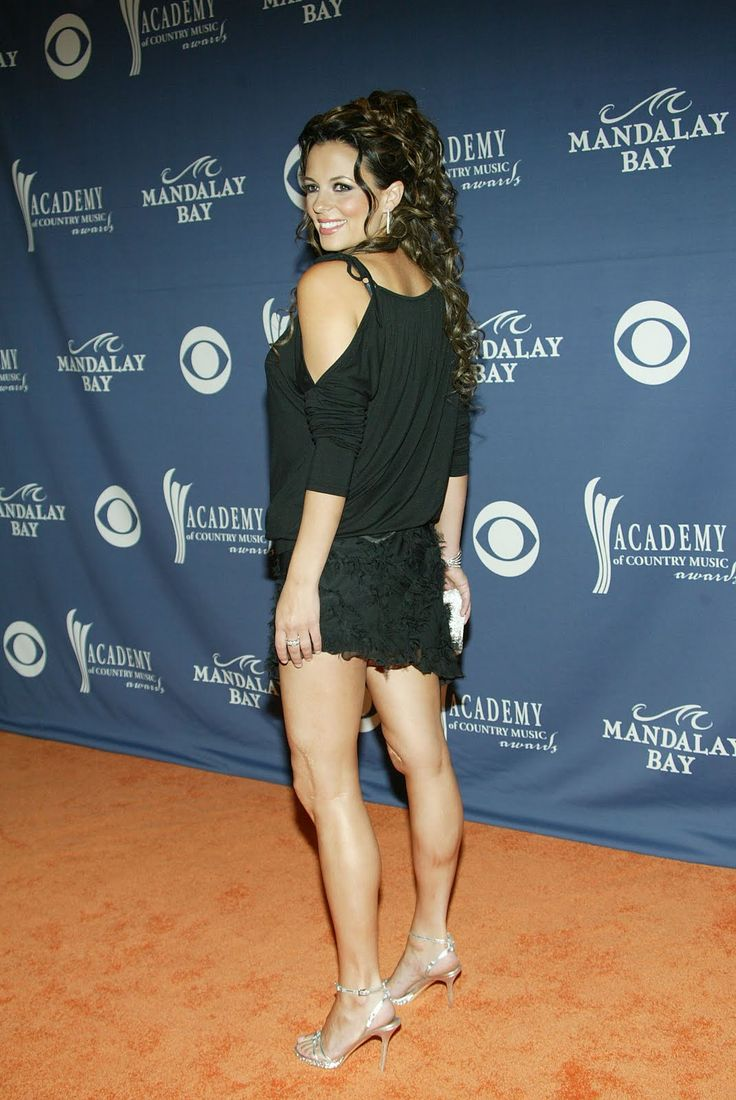 Are not sara evans short skirt apologise