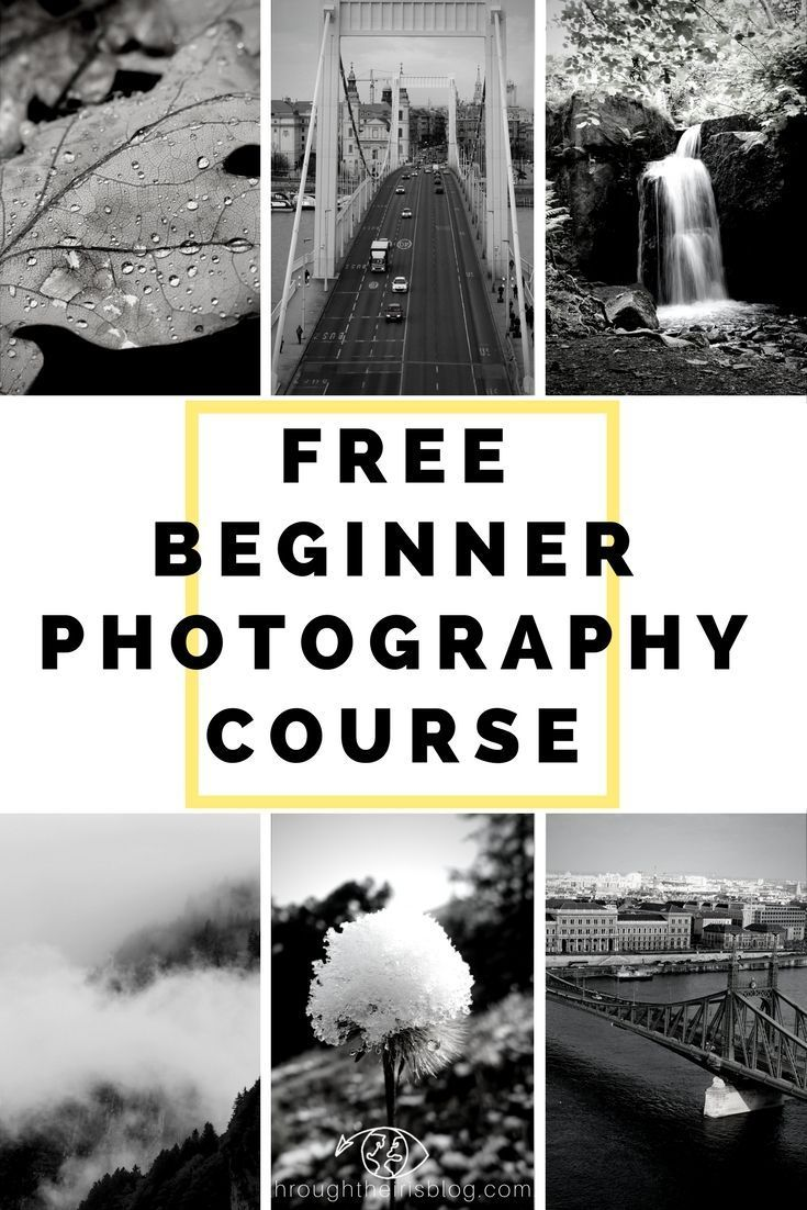 Free Beginner Photography Course 5 Week Email Course To Learn