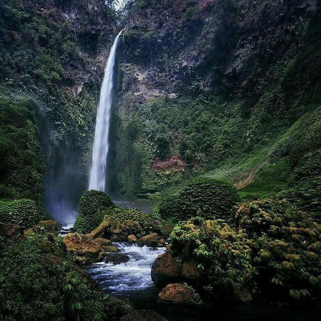 As beautiful as a rainbow, Coban Pelangi waterfall, East Java, Indonesia   IG: @dariszcahyadi
