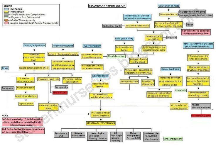 Cirrhosis Nursing Concept Map | SN   ako: Secondary Hypertension