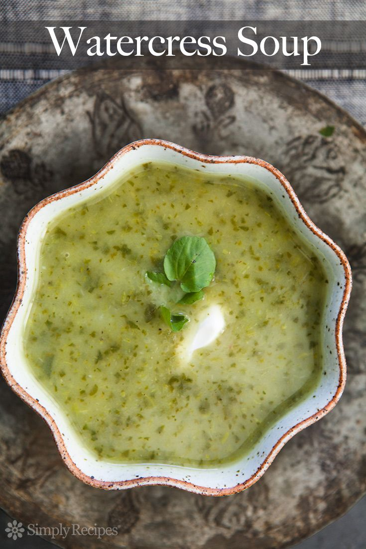 Watercress Soup ~ Watercress soup made with onions, potatoes, a little white wine and bunches of fresh watercress. ~ SimplyRecipes.com