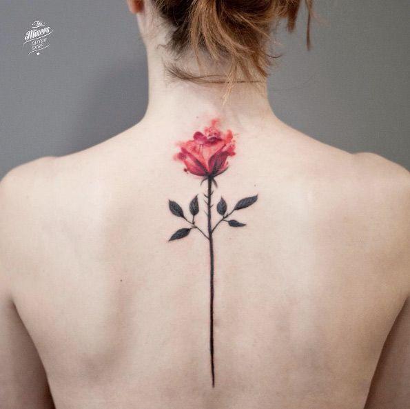 Watercolor rose by Magdalena Bujak