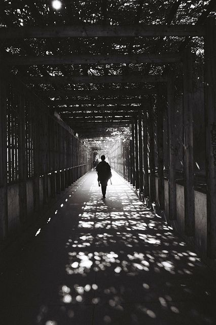 """☾ Midnight Dreams ☽  dreamy & dramatic black and white photography - """"Medici black""""by Haskii"""