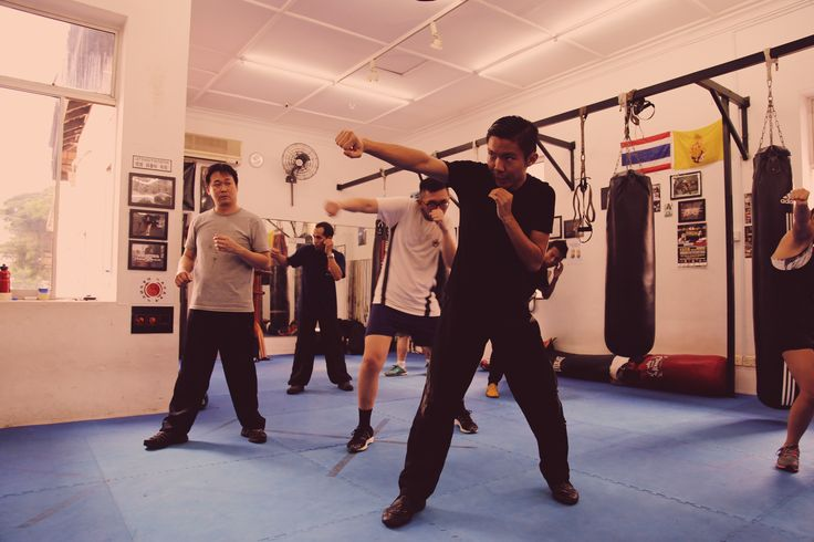 An introduction to the analysis of martial arts