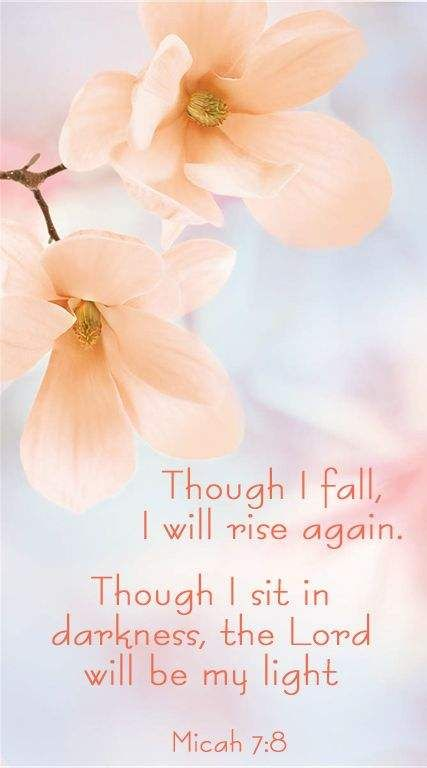 Micah 7:8 Bible verse~ Though I fall, I will rise again. Though I sit in darkness, the Lord will be my light. Spiritual inspiration and scripture of saving faith.  God restores us.