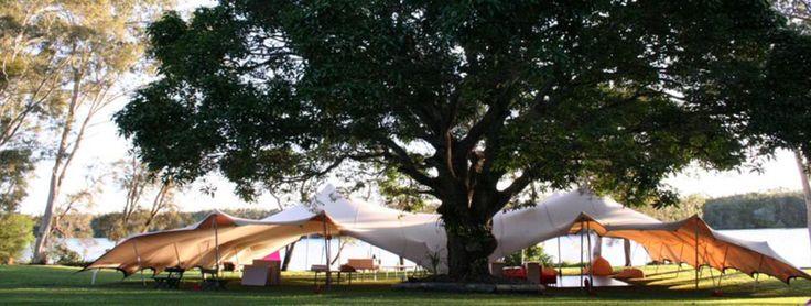 Nomadic tents, good provider