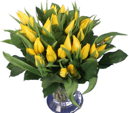 Gele tulpen boeket  Vanaf: €14,95