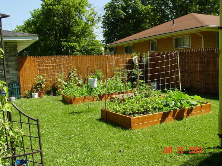74 best images about vegetable garden on pinterest for Building a raised vegetable garden