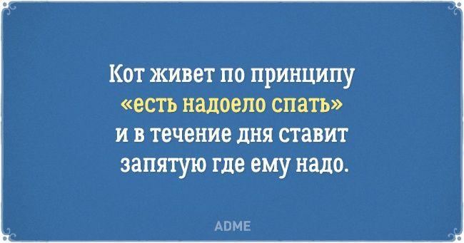 Хочу быть котом!!! ://www.adme.ru/svoboda-narodnoe-tvorchestvo/20-otkrytok-o-nelegkoj-zhizni-kotov-i-ih-vladelcev-1242115/