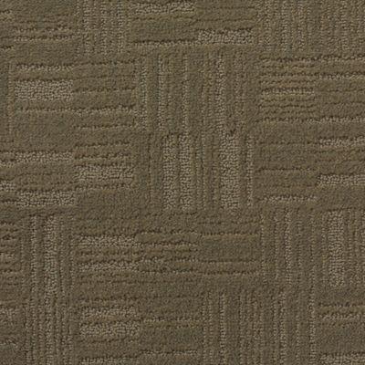 20 Best Patterned Carpet Images On Pinterest Mohawk