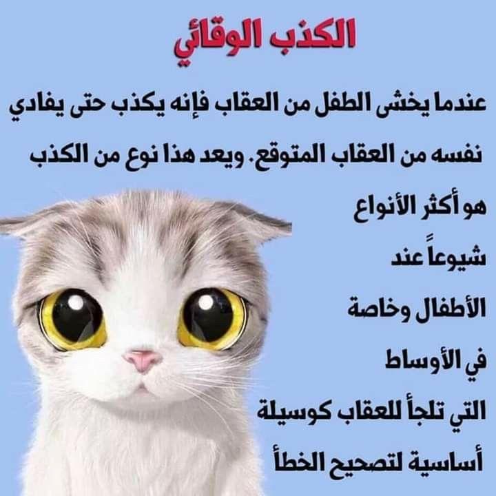 Pin By Asmăa Kld On تربية علم النفس التربوي Animals Owl