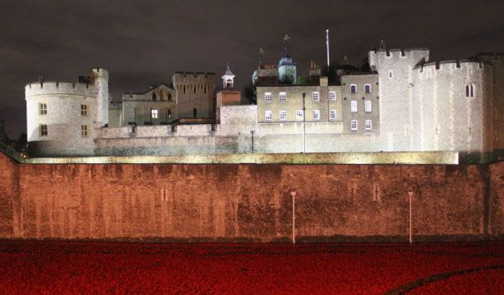 Towe of London Remembrance Day Poppies by DWhitePhotography