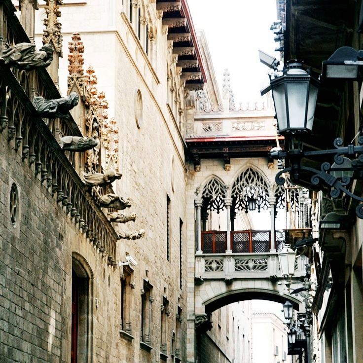 Barcelona Gothic Quarter! Mysterious, steeped in history, beautiful.