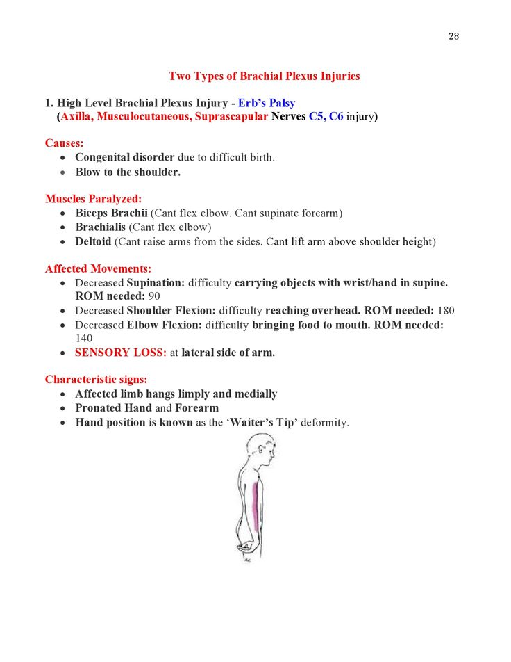 Peripheral Nerve Injuries Study Guide  page 28  https://www.inkling.com/read/skirven-rehabilitation-the-hand-upper-extremity-6th/chapter-45/presentation-of-specific-nerve