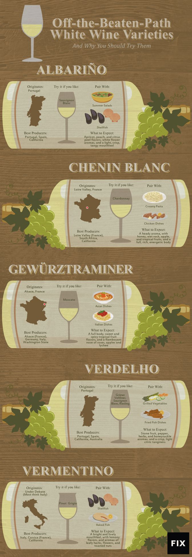 Do You Know the Basics of White Wine Varieties? (Infographic) | The Vision Times